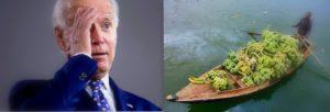 Biden and Banana Boat